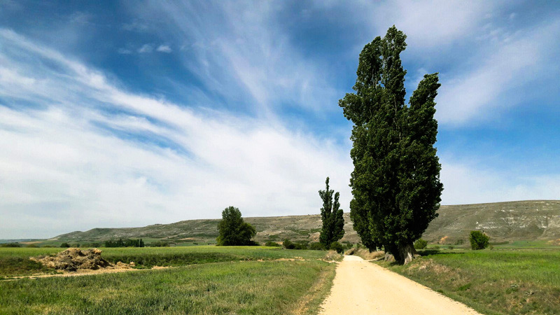 Motivos para fazer o Caminho de Santiago