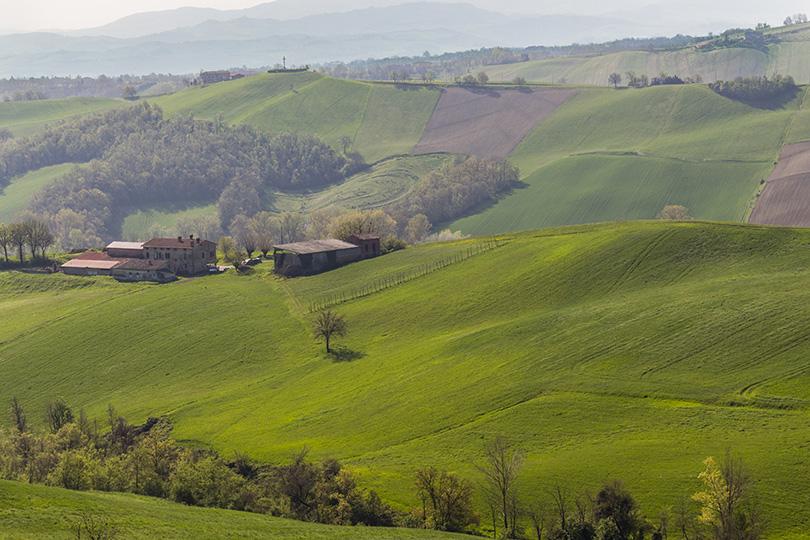Via Francigena - Dia14 - Emilia Romagna - Castelazzo